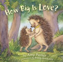 How Big Is Love? (ISBN: 9781433690426)
