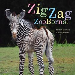 Zigzag Zooborns! : Zoo Baby Colors and Patterns (ISBN: 9781481431057)