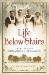 Life Below Stairs (ISBN: 9781250017659)