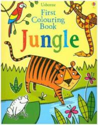Jungle (ISBN: 9781474945721)