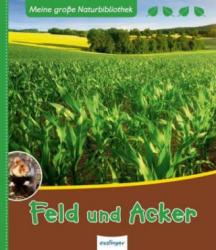 Feld und Acker - Axel Gutjahr (ISBN: 9783480233328)
