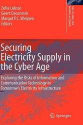 Securing Electricity Supply in the Cyber Age - Exploring the Risks of Information and Communication Technology in Tomorrow's Electricity Infrastructu (2010)