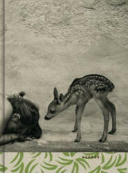 Summer Of The Fawn (ISBN: 9783868288957)
