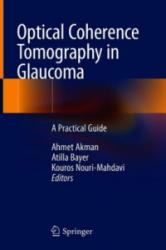 Optical Coherence Tomography in Glaucoma - A Practical Guide (ISBN: 9783319949048)