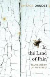 In the Land of Pain (ISBN: 9781784873455)