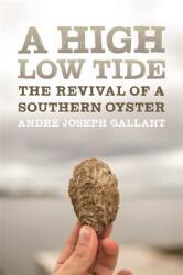 High Low Tide (ISBN: 9780820354507)