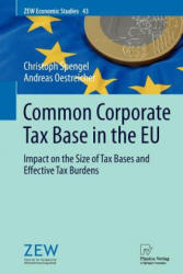 Common Corporate Tax Base in the EU (2011)