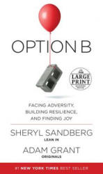 Option B: Facing Adversity, Building Resilience, and Finding Joy (2017)