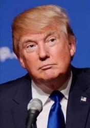 ALEXA VAN DEN BOSCH - Trump - ALEXA VAN DEN BOSCH (2017)
