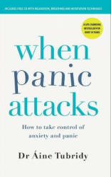 When Panic Attacks - How to take control of anxiety and panic (ISBN: 9780717180493)