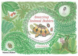 Amazing Animal Babies (ISBN: 9780500651742)