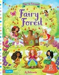 Fairy Forest (ISBN: 9781509879335)