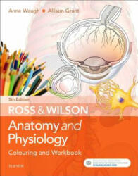 Ross & Wilson Anatomy and Physiology Colouring and Workbook (ISBN: 9780702073250)