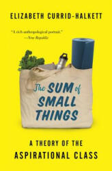 Sum of Small Things - A Theory of the Aspirational Class (ISBN: 9780691183176)