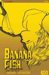 Banana Fish, Vol. 10 (ISBN: 9781421500485)