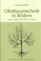 Obstbaumschnitt in Bildern (2003)