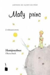 Maly Princ - Antoine de Saint-Exupéry (ISBN: 9783937467269)