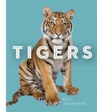 Alex Kuskowski, Diane Craig - Tigers - Alex Kuskowski, Diane Craig (ISBN: 9781624032752)