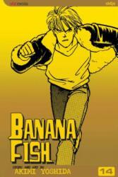 Banana Fish, Vol. 14 (ISBN: 9781421505244)