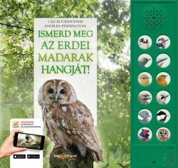 Ismerd meg az erdei madarak hangját! (2019)