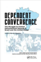 Dependent Convergence - The Struggle to Control Petrochemical Hazards in Brazil and the United States (ISBN: 9780415784337)