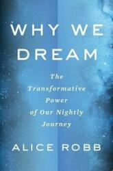 WHY WE DREAM THE TRANSFORMATIVE POWER OF (ISBN: 9780544931213)