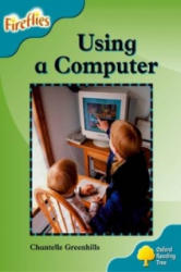 Oxford Reading Tree: Level 9: Fireflies: Using a Computer (ISBN: 9780198473275)