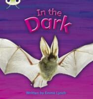 In the Dark (ISBN: 9781408260401)