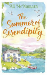 Summer of Serendipity (ISBN: 9780751566208)