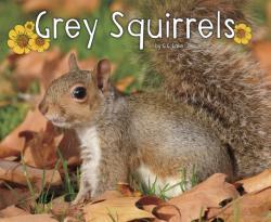Grey Squirrels (ISBN: 9781474721882)