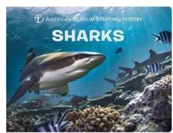 Sharks (ISBN: 9781454921288)
