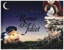 Guinea Pig Romeo & Juliet (ISBN: 9781408890646)