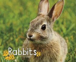 Rabbits (ISBN: 9781474721875)
