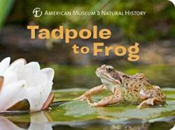 Tadpole to Frog (ISBN: 9781454922872)
