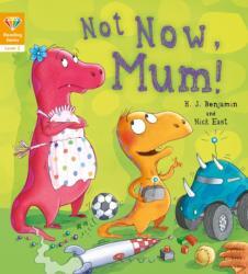 Reading Gems: Not Now, Mum! (ISBN: 9781784939250)