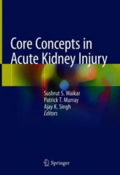 Core Concepts in Acute Kidney Injury (ISBN: 9781493986262)