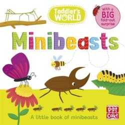 Toddler's World: Minibeasts - Pat-a-Cake (ISBN: 9781526381378)