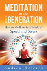 Meditation in the Igeneration - Andrew Holecek (ISBN: 9780989748025)