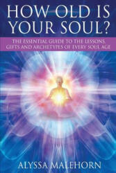 How Old Is Your Soul? - Alyssa Malehorn (ISBN: 9780997991406)