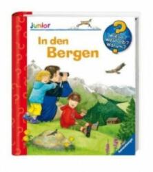 In den Bergen - Anne Ebert, Andrea Erne (2011)