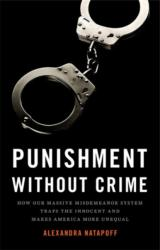 Punishment Without Crime - How Our Massive Misdemeanor System Traps the Innocent and Makes America More Unequal (ISBN: 9780465093793)