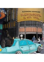 Pandemonium in New York (ISBN: 9781788786720)