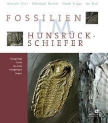 Fossilien im Hunsrck Schiefer (2011)