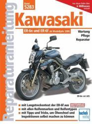 Kawasaki ER-6n - Franz J. Schermer (2010)