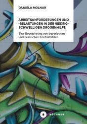 Arbeitsanforderungen und -belastungen in der niedrigschwelligen Drogenhilfe (ISBN: 9783963171307)