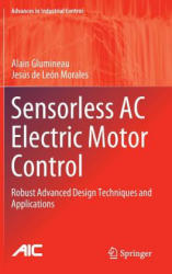 Sensorless AC Electric Motor Control - Robust Advanced Design Techniques and Applications (ISBN: 9783319145853)