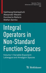Integral Operators in Non-Standard Function Spaces: Volume 1: Variable Exponent Lebesgue and Amalgam Spaces (ISBN: 9783319210148)