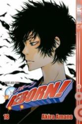 Reborn! - Version V. R. - Akira Amano (2010)
