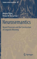 Neurosemantics - Neural Processes and the Construction of Linguistic Meaning (ISBN: 9783319285504)