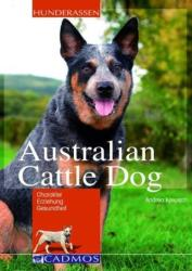 Australian Cattle Dog - Andrea Kreusch (2009)